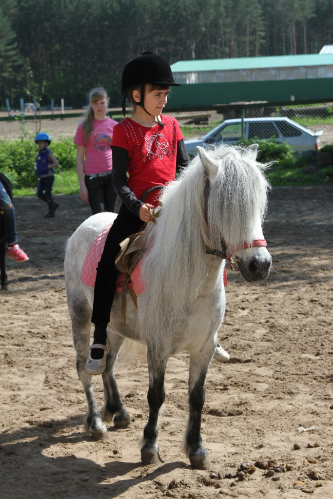 Пони-клуб Ярославль
