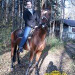 Конные прогулки, прогулки верхом на лошадях ярославль
